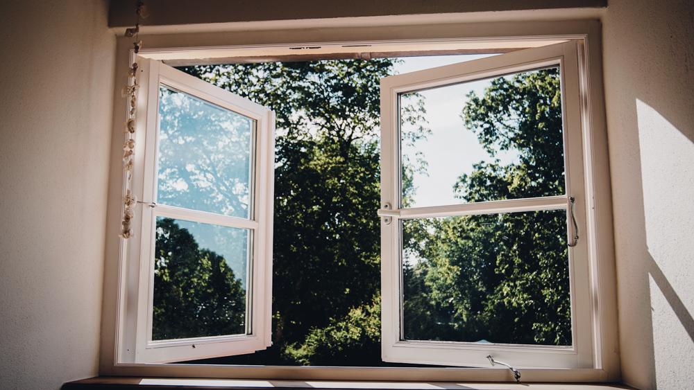 Blick aus dem Fenster Gutshaus Ehmkendorf